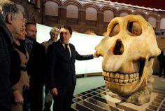 Ignacio González inaugura 'la Cuna de la Humanidad', una muestra única con piezas de más de 4 millones de años procedentes de África