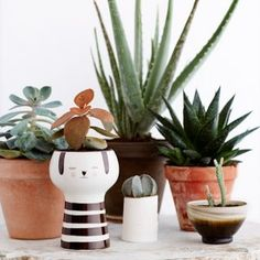 Flowerpot Kiki 59 EUR nordliebe.com