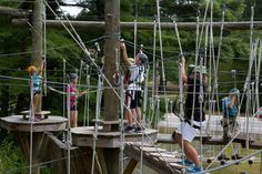 Monkey Trunks - Ziplines and High Ropes Adventure Course - have low course for kids