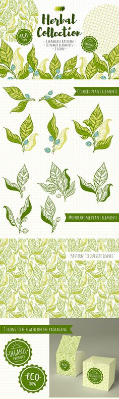 """Free download - """"Herbal collection"""" - collection of illustrated herbal seamless elements and prints. Ideal for design of packing goods in the style of """"eco""""."""