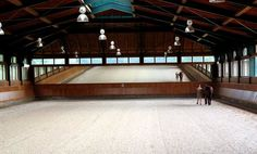 Gorgeous indoor arena and mirrors ... mirror_BeatrizFerratSalat.jpg 480×290 pixels