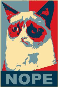 Grumpy Cat for President
