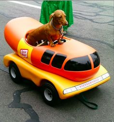 I can't even…as you kids say. | The Life Of A Wienermobile Driver