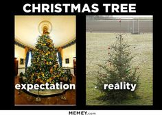 I blame the perfect people of Facebook and their perfect trees and decorations. I mean, once upon a time, when there was no such thing as social media,we didn't know what anyone's hous…