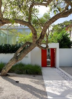 This Sparkling New Home Is a Perfect Remake of Classic Sarasota School Modernism - Photo 5 of 13 -