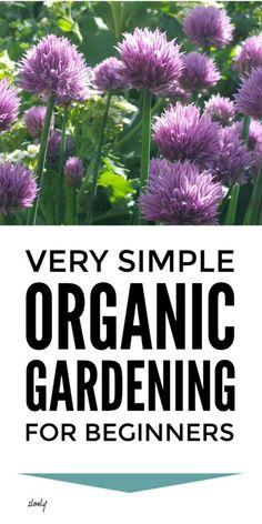 Organic Gardening Tips For Beginners, Organic Soil, Organic Gardening Tips, Organic Farming, Sustainable Gardening, Sustainable Living, Organic Vegetables, Growing Vegetables, Organic Weed Control, Soil Improvement