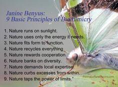 Biomimicry.