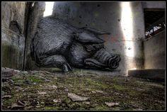 Roa - Pig in deep shit.  photo Romany wg