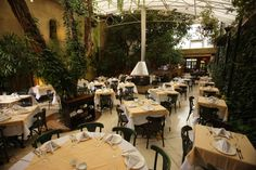 paisagismo em bares e restaurantes -Lillo