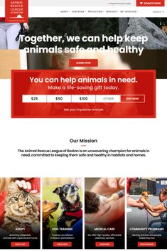 Best Portfolio Websites, Animal Rescue League, Wordpress Theme, All About Time, Learning, Creative, Life, Animals, Beautiful
