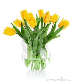 flowers+in+a+vase | Spring Flowers In Glass Vase Royalty Free Stock Images - Image ...