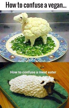 Funny Vegan Memes, Vegan Humor, Funny Food, Food Humor, Funny Memes, Hilarious, Funny Pics, Funny Quotes, Funny Things
