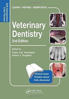Download free Veterinary Dentistry: Self-Assessment Color Review Second Edition (Veterinary Self-Assessment Color Review Series) by Frank Verstraete (2015-12-07) pdf