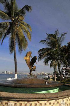 Dolphin Sculpture, Puerto Vallarta, Mexico