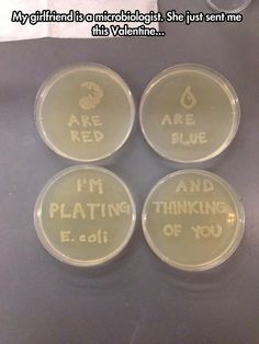 Love message from microbiologist