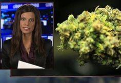 New Marijuana Study Confirms Everyone Knows You're High