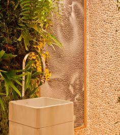 Plants, stones and mirror.