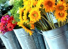 Fresh cut flowers grown at Floral and Hardy Farms in Lexington by the wonderful Donna Mills, a regular vendor at the All Local Farmers' Market