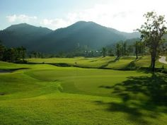 The #LochPalmGolfClub Provide The Lovely Objective For A Round Of Golf