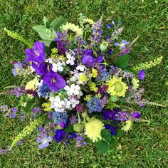 Homegrown blue and lime flowers in my garden