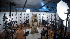 Hairy Moroff (played by Ian Whyte) started out as a Rebel character named Senna before ending up as a background character in Saw's militia. Here, the creature character (coded G030) stands before an array of photogrammic analysis cameras that capture every possible angle for future effects and product use.