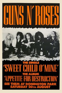 Guns & Roses at Dorrington Park England UK Concert Poster 1987