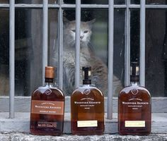 Elijah, Woodford Reserve's distillery cat, mourned | Bourbon Industry | Kentucky.com