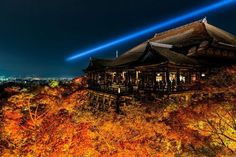 "lifeisverybeautiful: "" Autumn Leaves, Kyoto, Japan by Takahiro Bessho """