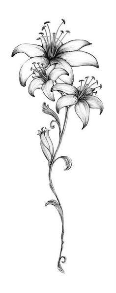Latest 45 lily tattoo designs for girls Bild Tattoos, Leg Tattoos, Body Art Tattoos, Tattoo Drawings, Sleeve Tattoos, Lily Tattoo Sleeve, Tattoo Art, Tattos, Tattoo Thigh