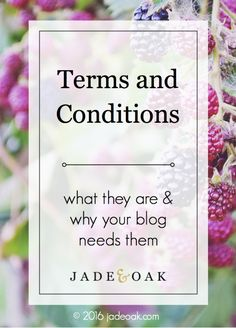 Terms and Conditions - What are they exactly? And do you NEED them on your blog? Learn more from an attorney / blogger on how to get terms and conditions for YOUR blog NOW.
