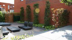 Moderne onderhoudsvriendelijke tuin - Foto 8