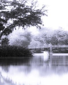 Geoff Robles from Hanging the Moon – Home Décor, Gift Ideas, Wall Art. Black and White Palmetto Bluff Bridge Digital Photography Palmetto Bluff, South Carolina