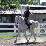 Redneck Dressage for horse lovers all over the world!