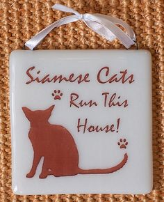 Siamese Cats Run This House! - Fused Glass Sign
