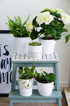 IKEA hack ... from simple BEKVÄM step stool to pretty perfect plant stand