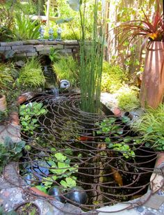 awesome Picture Sundays: World's Most Beautiful Raccoon Proofing... by http://www.dezdemon-exoticfish.space/fish-ponds/picture-sundays-worlds-most-beautiful-raccoon-proofing/