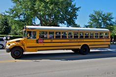 School Buses, Yellow