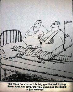 Far Side Cartoons