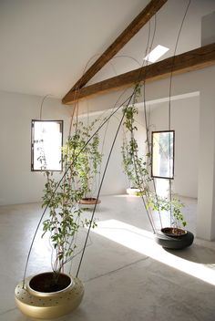 """Greenroom by Tomas Alonso 