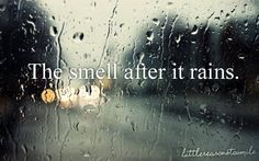 the smell after it rains.