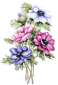 Watercolor Painting Art Print  FLOWERS  home decor by ARTTARATET