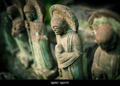 Daienji Temple, Meguro, Tokyo (June 24, 2012), via Flickr.