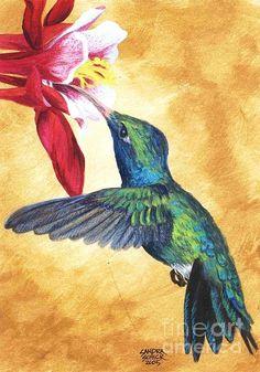hummingbird painting & flower