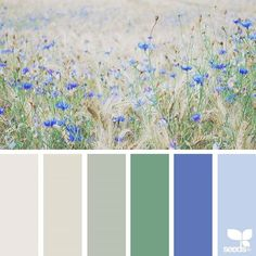 today's inspiration image for { color field } is by @kunstkiekje ... thank you, Nicole, for another breathtaking #SeedsColor image share!