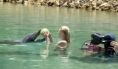 behind the scene: Rikki Chadwiks ans the dolphin Rony