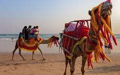 Best beaches of India: In a country full of colors, blue is, in fact, the warmest.  #india #asia #internabroad #volunteerabroad #interninindia #volunteerinindia #beaches #travel #wander #explore #worldendeavors #changeyourworld  worldendeavors.com