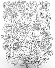 Children's storybook illustration or Line art If you need children's storybook illustration and coloring pages for kids and adults contact me #coloringpagesofinstagram #coloringpagesforkids #coloringpageforadults #coloringpagesig #coloringpagesforadults #coloringpages #coloringpage #coloringforadults #coloringforgrownups #coloringtherapy #coloringbookforadult #coloringbookofshadows #coloringbookcafe #coloringbookartist #colouringbooks #coloringbookshare #simpleart #lineartwork #linedrawing Flower Coloring Pages, Cool Coloring Pages, Adult Coloring Pages, Coloring Sheets, Coloring Books, Colorful Garden, Colorful Flowers, Flower Line Drawings, Zentangle Drawings