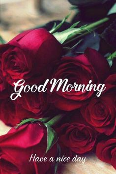 Good morning images for love Good Morning Monday Images, Good Morning Romantic, Good Morning Beautiful Pictures, Good Morning Happy Sunday, Good Morning Roses, Happy Sunday Quotes, Morning Morning, Good Morning Good Night, Morning Pictures