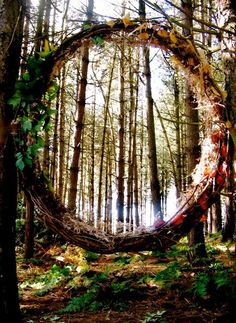 """Portal Through The Woods, by Asphodel-Foxx  * piece created using only the materials found fallen in the forest )O("