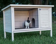 Angora Rabbit Cages With The Design Stage And Wood Door Design Angora Rabbit Cages Rabbit
